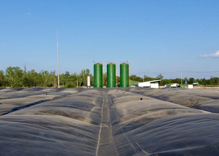 Thai Wah Biogas